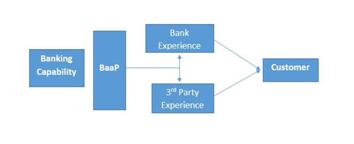 Schematic representation of Banking as a Platform