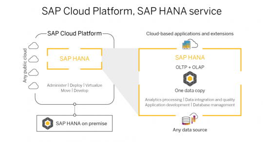 SAP Cloud Platform, SAP HANA service