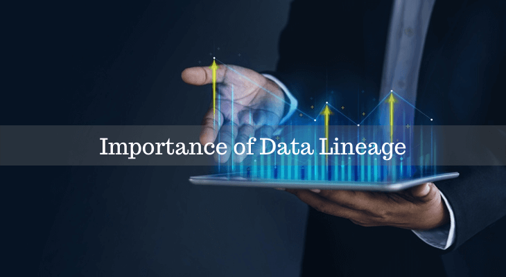 Data Lineage Importance