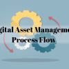 Digital Asset Management Process Flow