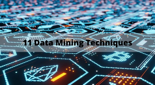 11 Data Mining Techniques