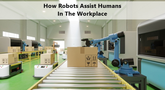 How Robots Assist Humans In Challenging Workplaces